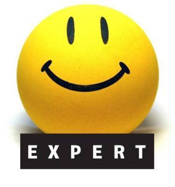 expert-074920-03172010